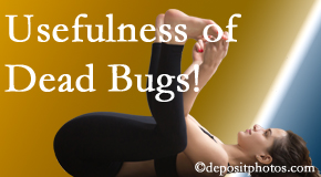 Satterwhite Chiropractic finds dead bugs quite useful in the healing process of Oxford back pain for many chiropractic patients.