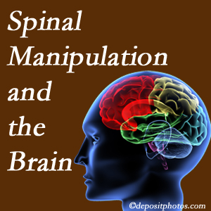 Satterwhite Chiropractic [shares research on the benefits of spinal manipulation for brain function.